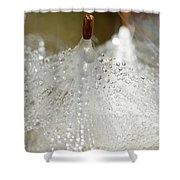 Dew On Milkeed Shower Curtain