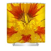 Dew On Nasturtium Shower Curtain