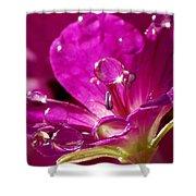 Dew On Pink Shower Curtain