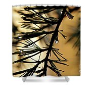 Dewdrop Shower Curtain