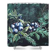 Dewey Blyes Shower Curtain