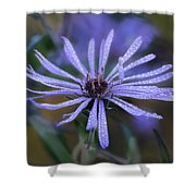 Dewey Petals Shower Curtain