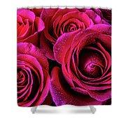 Dewy Rose Bouquet Shower Curtain