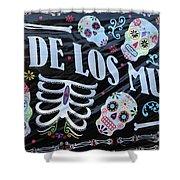 Dia De Los Muertos Banner  Shower Curtain