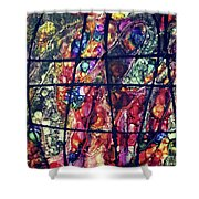 Diabolical Madness - V1cri78 Shower Curtain