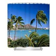 Diamond Head And Palm Trees Shower Curtain