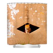 Diamond Kitty Shower Curtain