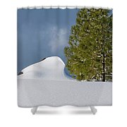 Diamonds In The Snow Shower Curtain