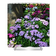 Dianthus Flower Bed Shower Curtain