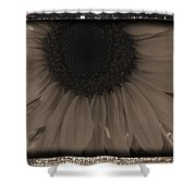 Diatrop Three Quarter Sunflower Shower Curtain