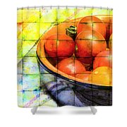 Diced Tomatoes Shower Curtain
