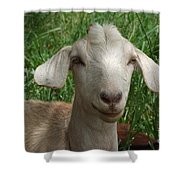 Did You Bring Lunch Shower Curtain