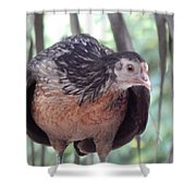 Did You Say Pose? Shower Curtain