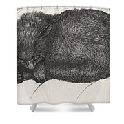 Diddy Big Face Shower Curtain