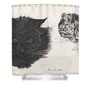 Diddybigface And Colliebeastie Shower Curtain