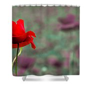 Different 2 Shower Curtain