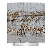 Difficult Reeding Shower Curtain
