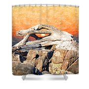 Diftwood Sunset Shower Curtain