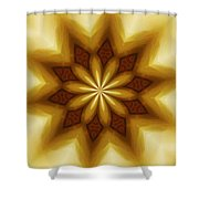 Digital Doodle 110510a Shower Curtain