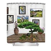 Digital Exhibition _ Bonsai 22 Shower Curtain