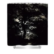 Digital Fine Art Work Full Moon Trees Gulf Coast Florida Shower Curtain by G Linsenmayer