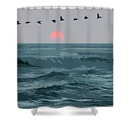 Digital Illustration Shower Curtain