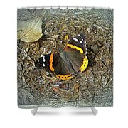Digital Red Admiral Butterfly - Vanessa Atalanta Shower Curtain