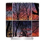 Digital Winter Trees Shower Curtain