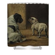 Dignity And Impudence Shower Curtain