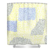 Dilapidated Shower Curtain