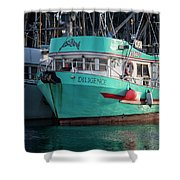 Diligence At French Creek Shower Curtain