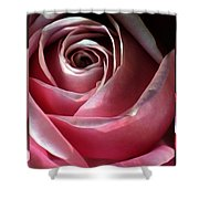 Dimming Rose Shower Curtain