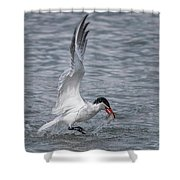 Dine And Dash Shower Curtain