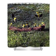 Goldfinch Convention Shower Curtain