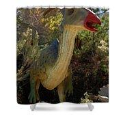 Dinosaur 11 Shower Curtain