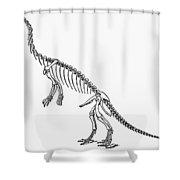 Dinosaur: Anchisaurus Shower Curtain