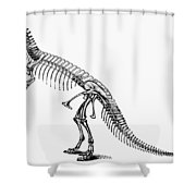 Dinosaur: Ceratosaurus Shower Curtain
