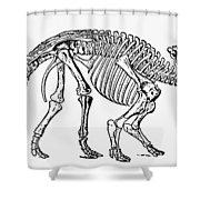Dinosaur: Monoclonius Shower Curtain