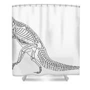 Dinosaur: Plateosaurus Shower Curtain