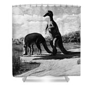 Dinosaurs: Trachodon Shower Curtain