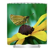 Dion On A Brown Eyed Susan Shower Curtain