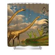 Diplodocus Dinosaur Romance Shower Curtain