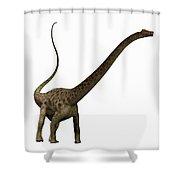 Diplodocus Profile Shower Curtain