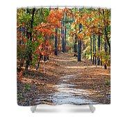 Autumn Scene Dirt Road Shower Curtain