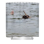 Dirty Water Dog And Feet Shower Curtain