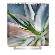 Dirty White Lily 2 Shower Curtain