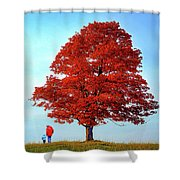 Discovering Autumn - Reflection Shower Curtain