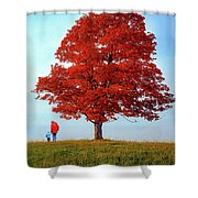 Discovering Autumn Shower Curtain