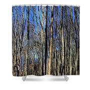 Discovery Park No.3 Shower Curtain