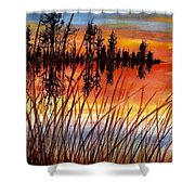 Distant Reflections Shower Curtain